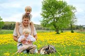 picture of shepherds  - A young father and his two little boy children are relaxing in a yellow flower meadow with their German Shepherd dog on a spring day - JPG