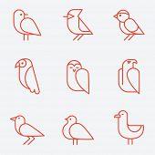stock photo of cardinal-bird  - Bird icons - JPG