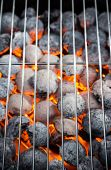 stock photo of briquette  - Burning grill briquettes with clear empty grid - JPG