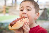 foto of sandwich  - Young kid bites a big sandwich outdoor - JPG