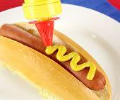 Mustard On Hot Dog