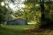 Rural August Morning