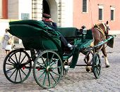 Carriage With A Sleeping Coachman