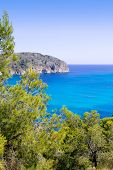 Andratx Camp de Mar in Mallorca Balearic Islands pines and mountains bay