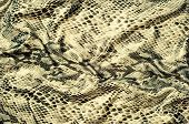 Texture Of Snake Skin Fabric