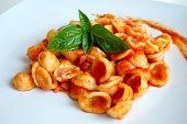 Orecchiette Pasta with Tomato sauce and basil