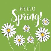 Hello Spring! Hello Spring Floral Vector Illustration With Daisies. Hello Spring Card, Poster For De poster