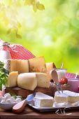 Large Assortment Of Artisanal Dairy Products In Nature Vertical Composition poster