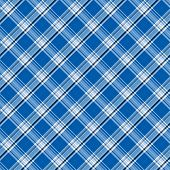Bright Blue Plaid