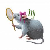Virgo Creative Digital Illustration Of Astrological Sign. Rat Or Mouse Symboll Of 2020 Year Signs In poster