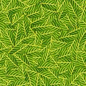 Green leafs for background