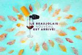 Beaujolais Nouveau Poster Design. The New Wine Has Arrived. With Watercolor Glass And Bottle, Autumn poster
