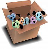 Box O' Pups