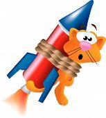 Gato de cohete