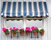 stock photo of awning  - Awning on the side of a building with purple flowers in front - JPG