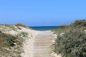 camino a una playa