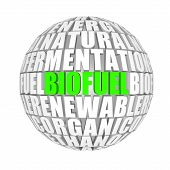 biofuel around us
