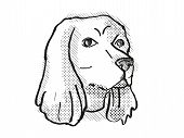 Retro Cartoon Style Drawing Of Head Of A Cocker Spaniel , A Domestic Dog Or Canine Breed On Isolated poster