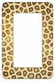 Leopard print frame