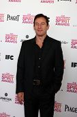 LOS ANGELES - FEB 23:  Jason Isaacs attends the 2013 Film Independent Spirit Awards at the Tent on the Beach on February 23, 2013 in Santa Monica, CA