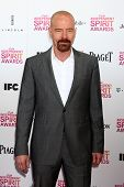 LOS ANGELES - FEB 23:  Bryan Cranston attends the 2013 Film Independent Spirit Awards at the Tent on
