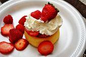Strawberry and Raspberry Shortcake