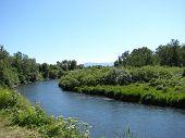 Saltery River