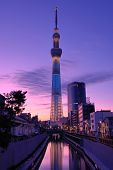 TOKYO - NOVEMBER 3: Tokyo Sky Tree November 3, 2012 in Tokyo, JP. At a height of 634.0 meters, it is