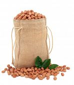 Peanuts in a hessian sack with leaf sprigs over white background.