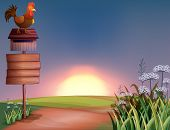 Illustration of a rooster above a mailbox