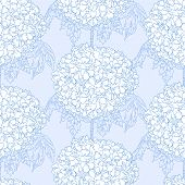 pic of hydrangea  - Vector illustration of beautiful Hydrangea seamless pattern - JPG