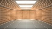 image of diffusion  - Soundproof room - JPG