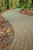 Mossy curved brick path into ferny woods