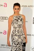 LOS ANGELES - FEB 24:  Nina Dobrev arrives at the Elton John Aids Foundation 21st Academy Awards Vie