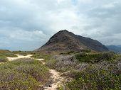 Sand Trail At Kaena Point