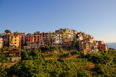 Close Picture Of Corniglia