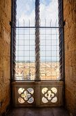 Window Over Firenze