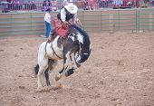 Gallup, Indian Rodeo