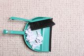 Green Sweeping Brush Dustpan