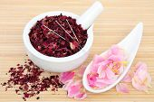 Chinese herbal medicine with acupuncture needles and fresh and dried peony flowers. Fuguihua.