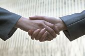 Close up of two business people shaking hands