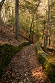 Hiking Path poster