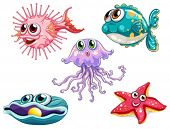 Illustration of the five sea creatures on a white background