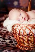 Newborn Baby Lies In Basket