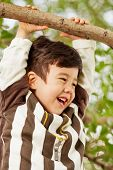 Closeup portrait of smiling little boy who hang on branch grasping at it with hands
