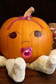 Pumpkin Baby Girl Portrait