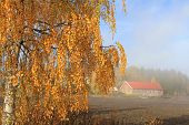 Autumnal Country Landscape With Morning Mist