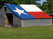 Shed With Texas Flag