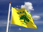 Oakland City Flag
