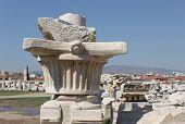 Agora Column (original  Capital)1